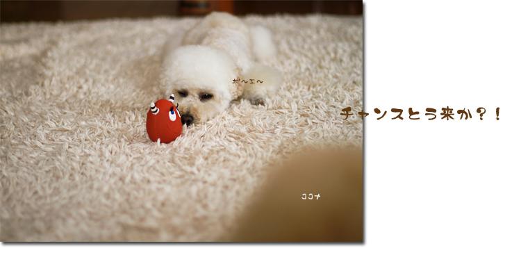4_20100714100510.jpg