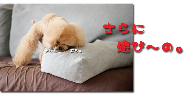 9_20100713102414.jpg