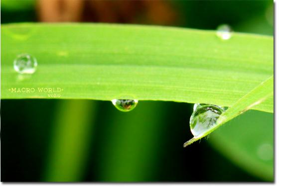 waterdrop3.jpg