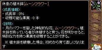 RedStone 11.11.22[06]