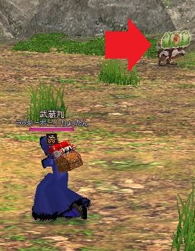 mabinogi_2011_09_29_002.jpg
