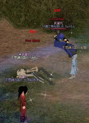 mabinogi_2011_10_25_007.jpg