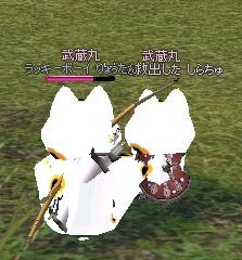 mabinogi_2011_10_30_014.jpg