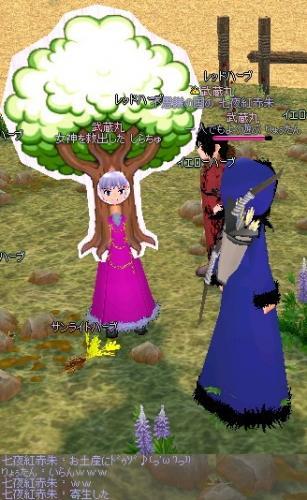 mabinogi_2011_11_07_018.jpg