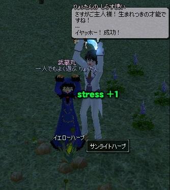mabinogi_2011_11_10_012.jpg