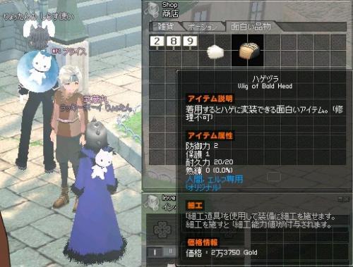 mabinogi_2011_11_15_001.jpg