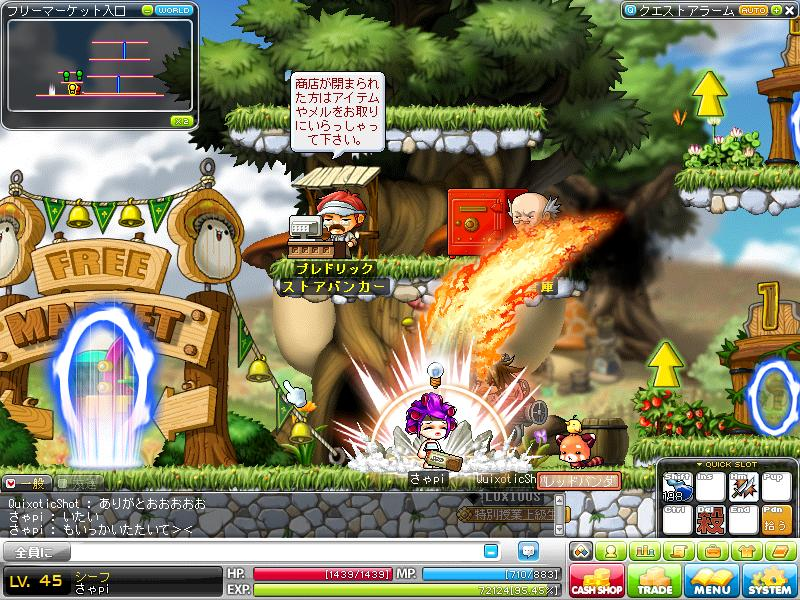 Maple110131_234854.jpg