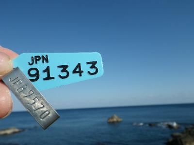 IMGP8071.jpg