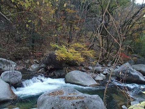 131123昇仙峡 :紅葉