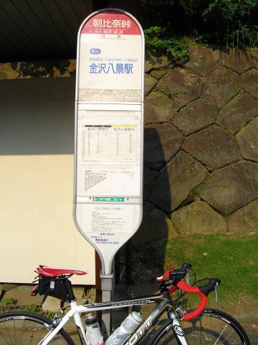 IMGP1226.jpg