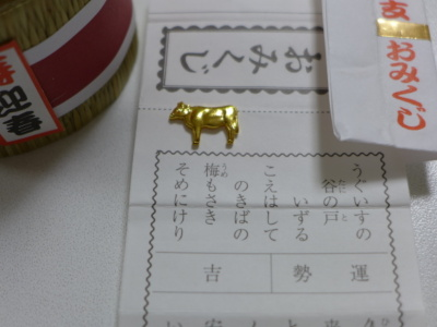 blogP1080434.jpg
