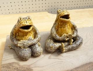 2009031_frog2.jpg