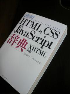 20100217_css.jpg