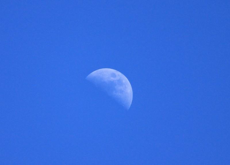 20100723_moon.jpg