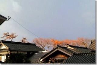 20121115_otiba.jpg