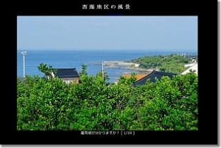 20131111_slide.jpg