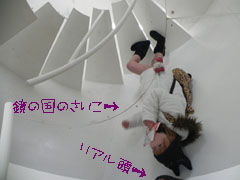 MeiPAM201204.jpg