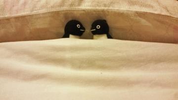 2013227-ベッド (1)-加工