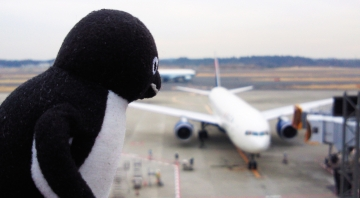 20140125-成田空港 (4)-加工