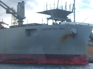 tanker in woodchip loading harbour