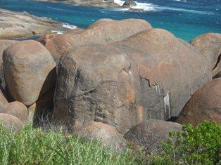 elphant rock2