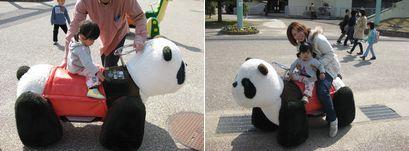 東山動物園9