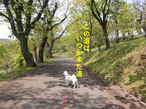 001_convert_20110525132819.jpg