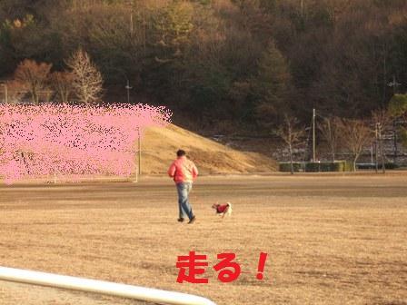 blog6407.jpg