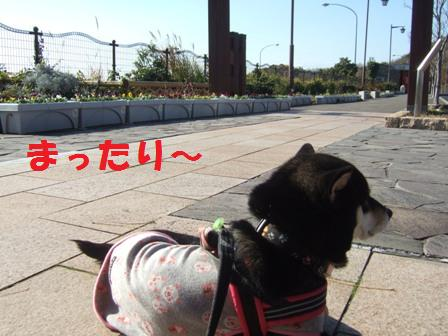 blog6491.jpg