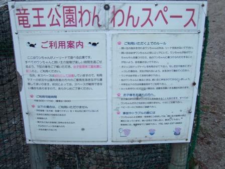 blog6542.jpg