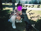 ss闘犬2