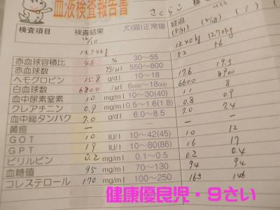 ss008のコピー