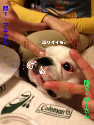 soji6のコピー