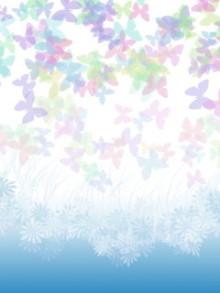 夜月 虹色蝶々.jpg