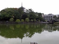 興福寺-073