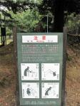 公園-089