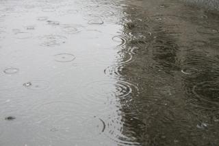 rain_convert_.jpg