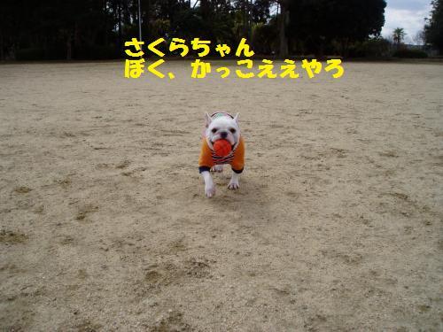 005_convert_20110303140644.jpg