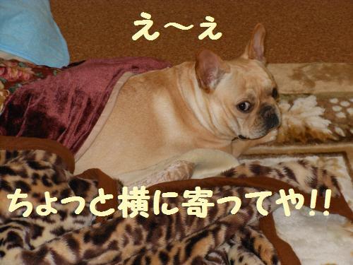 006-2009-10-11+023_convert_20111127235602.jpg