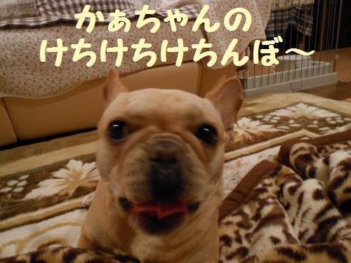 010-2009-10-11+026_convert_20111127235828.jpg