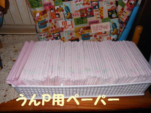 012-2009-10-11+022_convert_20111127235513.jpg