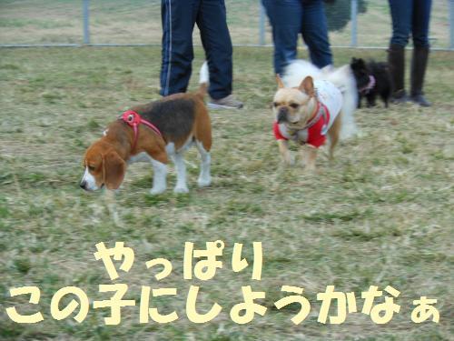 111_10convert_20111103231427.jpg
