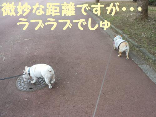 111_10convert_20111130230942.jpg