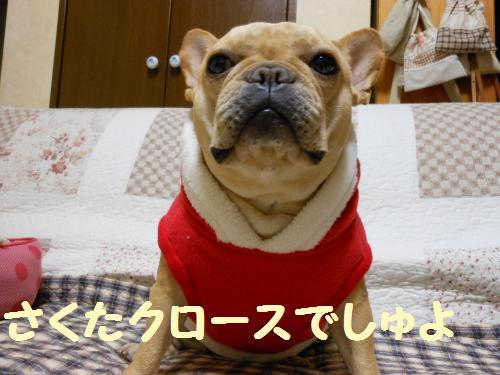 111_10convert_20111223031302.jpg