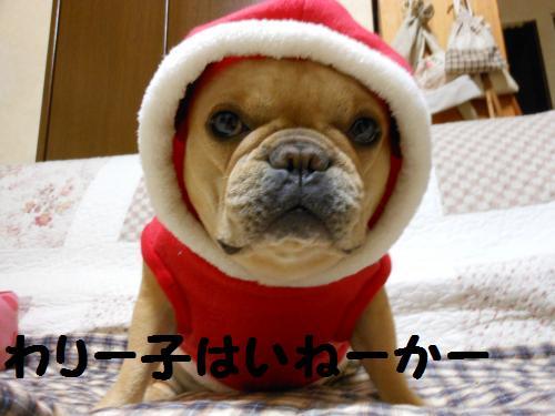 111_11convert_20111223031424.jpg