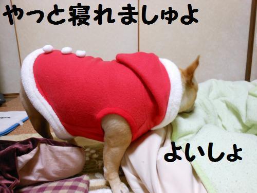 111_14convert_20111223031222.jpg