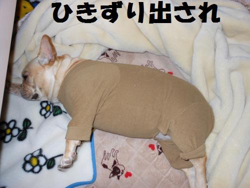 111_15convert_20111026003034.jpg