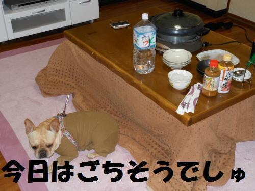 111_15convert_20111103232009.jpg