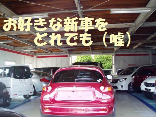 111_16convert_20111008012430.jpg