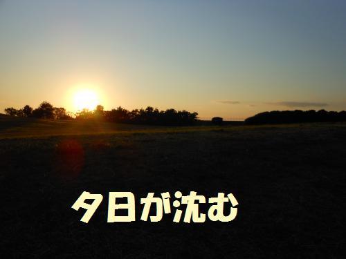 111_16convert_20111117004655.jpg